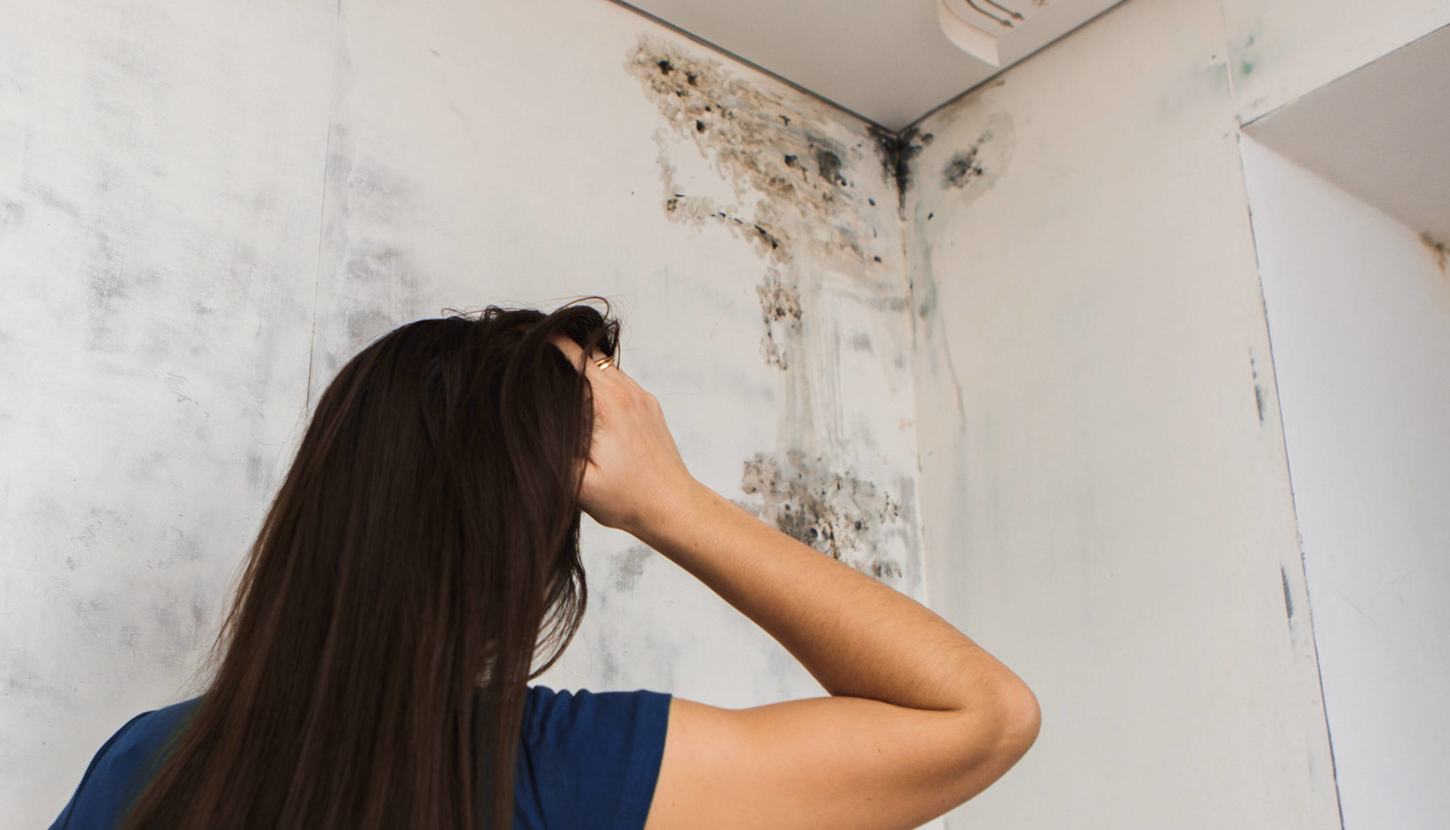 Woman looking at black mold in upper corner of room in Providence Rhode Island